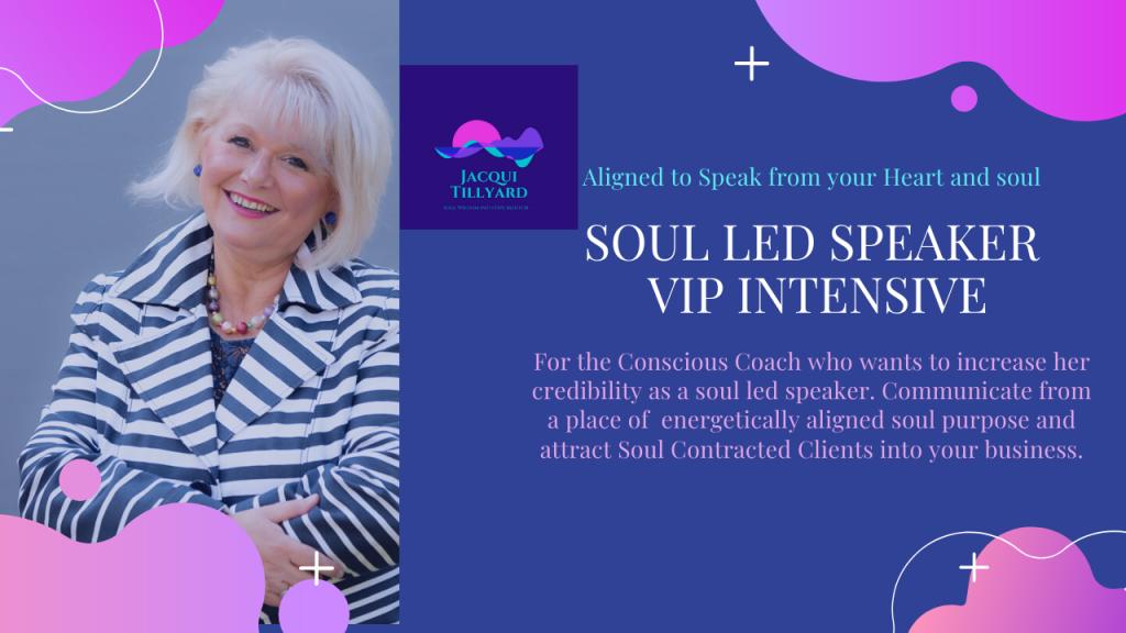 Soul Led Speaker VIP Intensive